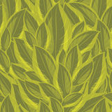 Seamless background with a green leaves Royalty Free Stock Images
