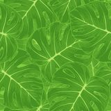 Seamless background. Green leaves with a monster o Royalty Free Stock Image