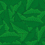 Seamless background of green leaves. seamless pattern. Stock Photos