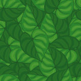 Seamless background of green leaves.seamless pattern. Royalty Free Stock Photos