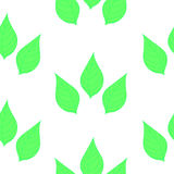 Seamless background with green leaves on white background.  vector illustration