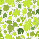 Seamless background with green sheet Stock Image