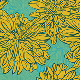 Seamless background with hand drawn  flowers. Vector illustratio Royalty Free Stock Photo