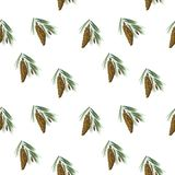 Seamless background with Hand drawn pine cone royalty free stock photography