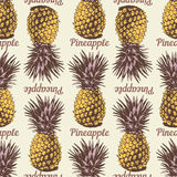 Seamless background with hand drawn pineapples. In retro style coloring Stock Photos