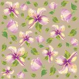 Seamless background with the hibiscus image. Retro floral background Stock Images