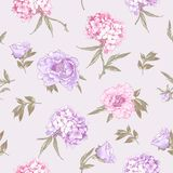 Seamless Background with Hydrangea and Peonies Royalty Free Stock Images