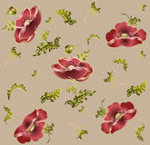 Seamless background. Illustration poppy. Royalty Free Stock Photography