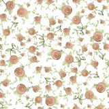 Seamless background.Illustration rose. Royalty Free Stock Image