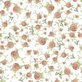Seamless background.Illustration rose. Royalty Free Stock Image