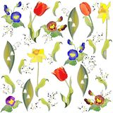 Seamless background.Illustration tulip and lily of. The valley and daffodil and pansies Royalty Free Stock Photos