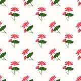 Seamless background image colorful botanic flower leaf plant red Royalty Free Stock Photo
