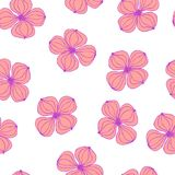 Seamless background image colorful botanic flower plant pink dogwood Cornus. On white Stock Photos