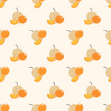 Seamless background image colorful tropical fruit cape gooseberry Stock Photography