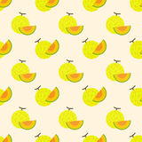 Seamless background image colorful tropical fruit net melon Stock Photography