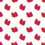 Seamless background image colorful tropical fruit red meat dragon Stock Photography
