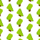 Seamless background of isometric trees. Vector illustration in p Stock Photos