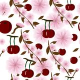 Seamless background with juicy cherries and cherry flowers stock illustration