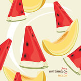 Seamless background with juicy melon and watermelo Stock Images
