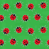 Seamless background - ladybugs on green Stock Image