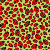 Seamless background with ladybugs Royalty Free Stock Image