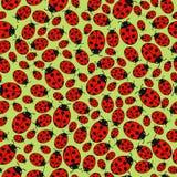 Seamless background with ladybugs Royalty Free Stock Image