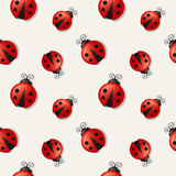 Seamless background with ladybugs. Vector illustration. Stock Photography
