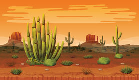 Seamless background of landscape with desert and cactus. A high quality horizontal seamless backgroundof landscape with desert and cactus. Sunset on a Stock Images