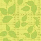 Seamless background leaf green Stock Photo