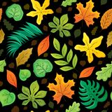 Seamless background with leaves 4 Stock Photography
