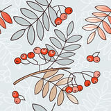 Seamless background with leaves Rowan Royalty Free Stock Photos