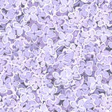 Seamless background with lilac flowers. Vector. Stock Photography