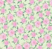 Seamless background from lilac roses Stock Photography