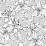 Seamless background with lilies and butterflies. Royalty Free Stock Images