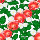 Seamless pattern of flowers Royalty Free Stock Photos