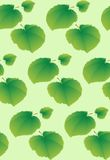 Seamless background with lime leaves. There is a variant in the vector Royalty Free Stock Image