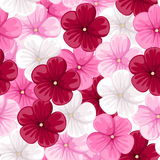 Vector Seamless background with mallow flowers. Vector Illustration of seamless background with red, pink and white mallow flowers Stock Photos