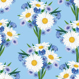 Seamless background with meadow flower. Seamless pattern background with bouquets of chamomiles and cornflowers Stock Image