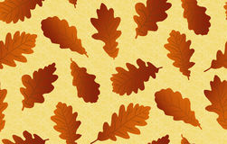 Seamless background with oak leaves Royalty Free Stock Images
