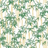 Seamless Background Of Tropical Bamboo Stock Photography