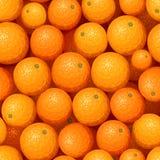 Seamless background with orange fruit. Vector illustration. Royalty Free Stock Photos