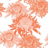 Seamless background with orange Japanese chrysanthemums and ornament on white backdrop. Inscription Autumn garden of chrysanthemums royalty free illustration