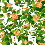 Seamless background with orange roses Stock Photography