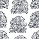 Seamless background of oyster mushroom Royalty Free Stock Photography