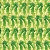 Seamless background, palm leaves Royalty Free Stock Photos