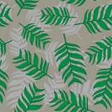 Seamless  background palm leaves. Floral background. Royalty Free Stock Image