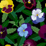 Seamless background from pansy flowers and leaves.  Stock Photos