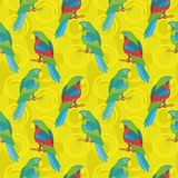 Seamless background, parrots. Seamless cartoon background: colored parrots sits on a wooden poles Royalty Free Stock Photos