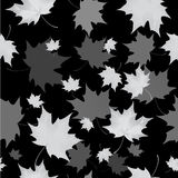 Seamless background pattern of autumn leaves. Falling , grief and sadness. Stock Images