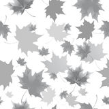 Seamless background pattern of autumn leaves. Falling , grief and sadness. Royalty Free Stock Photo